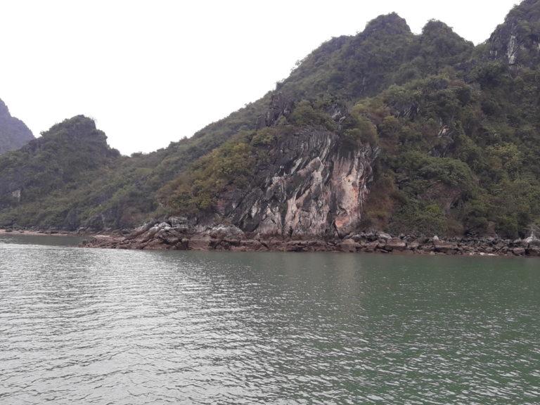 Kalksteinfelsen aus der Nähe