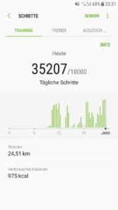 Fast 25 Km in Singapur an einem Tag zurückgelegt!