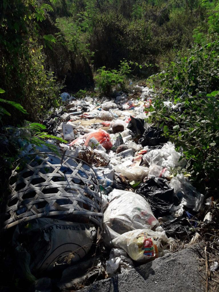 Bali hat ein schlimmes Problem mit Umweltverschmutzung.
